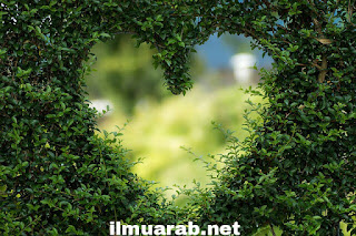 Kata kata bahasa arab romantis dan artinya