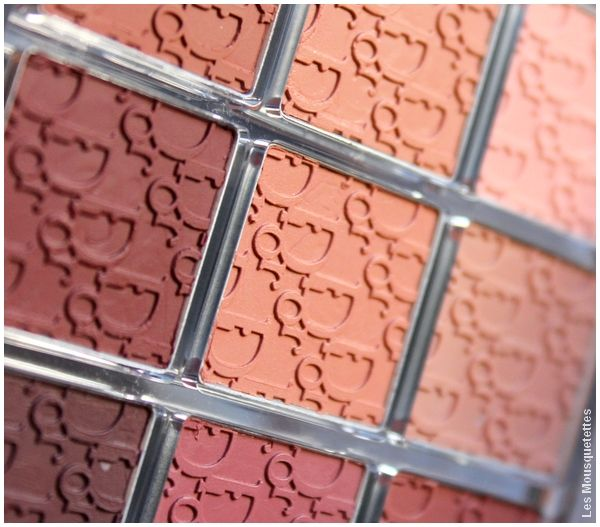 Lip Palette, Dior Backstage l'avis du blog !