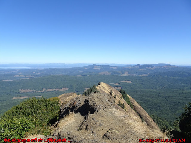 Saddle Mountain Hike Oregon