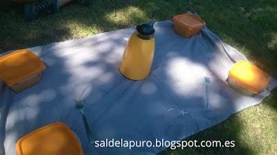 ideas-picnic-facil