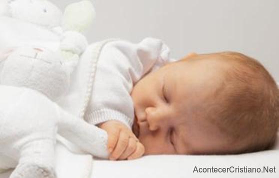 Bebé descansando plácidamente