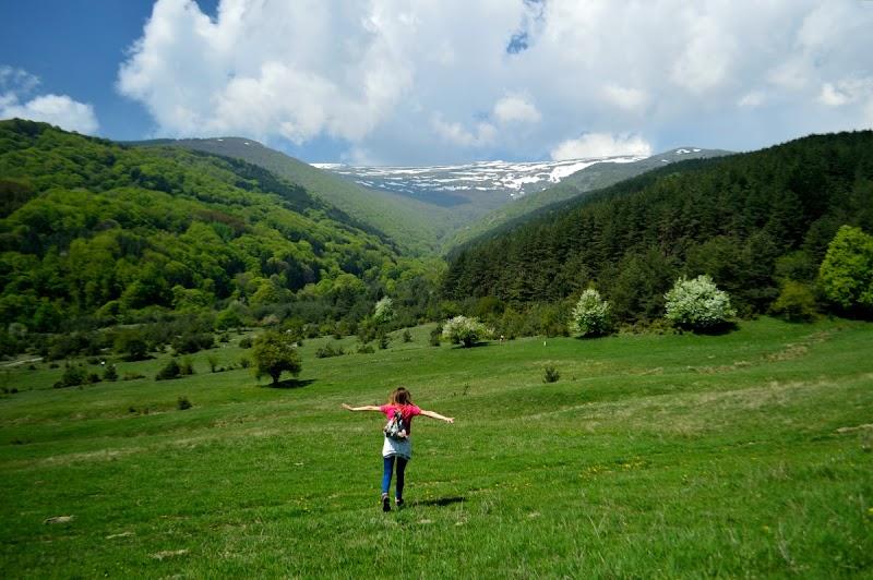 На разходка до резерват Бистришко бранище