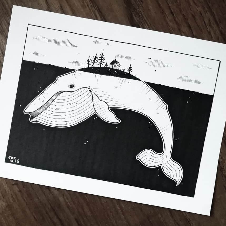 09-Whale-Sofia-Härö-Black-and-White-Ink-Animal-Drawings-www-designstack-co