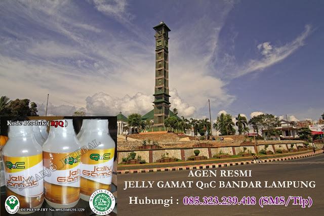 Agen Jelly Gamat QnC Bandar Lampung