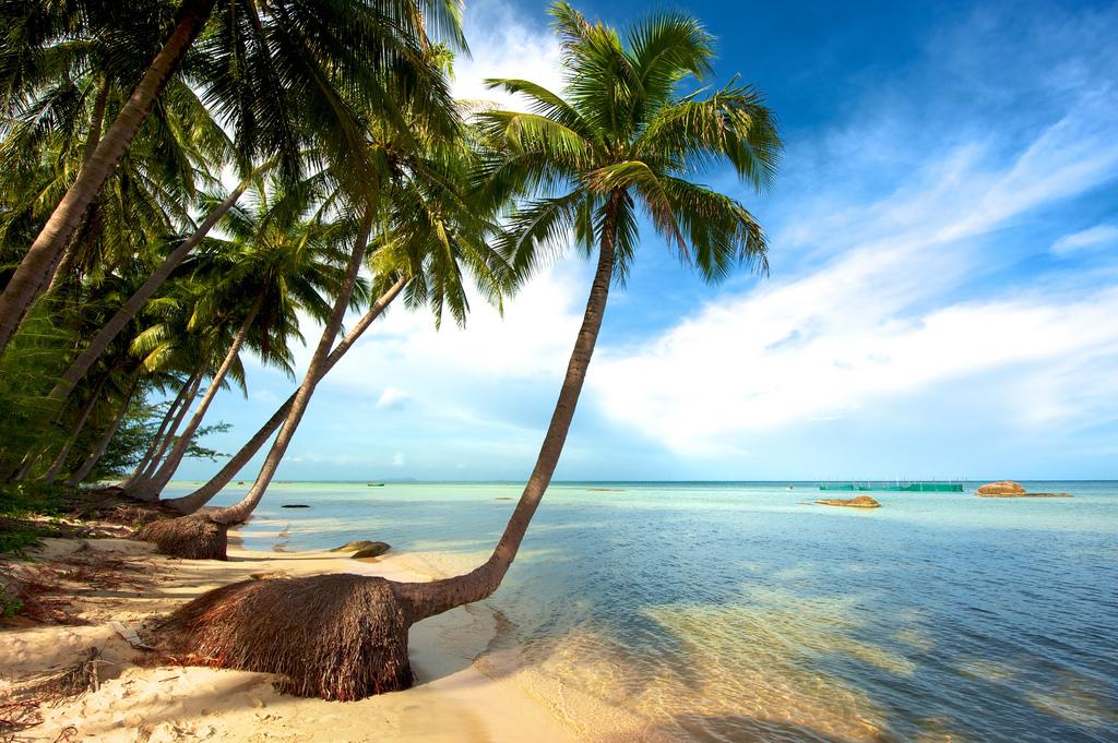 10 bãi biển đẹp nhất Việt Nam_6