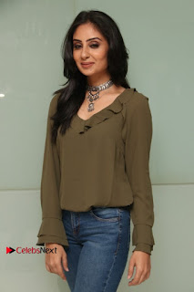 Actress Bhanu Sri Mehra Latest Pos in Jeans at Simba Audio Launch  0010.jpg