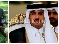 Pentolan Aksi Islam Ingin Jokowi Jadi Mediator Krisis Qatar Negara Terkaya DI Dunia