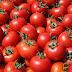 Γιατί οι ντομάτες πρέπει να μένουν εκτός ψυγείου
