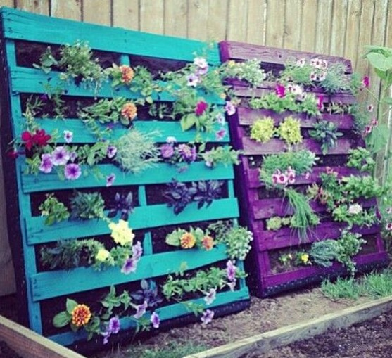Beauty Pallet Garden for Flowers