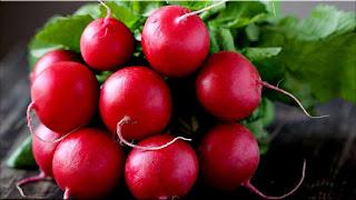 gambar buah lobak merah