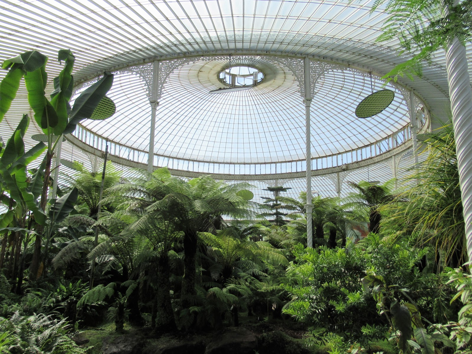 """Image result for botanical garden glasgow"""""""