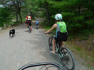 Acadia-National-Park-Cadillac-Mountain-Carriage-Trails