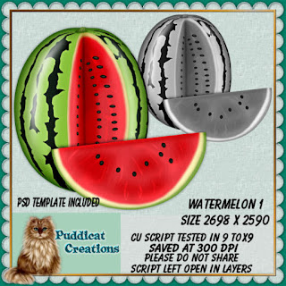http://puddicatcreationsdigitaldesigns.com/index.php?route=product/product&path=348_89&product_id=4159