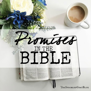 promises in the Bible