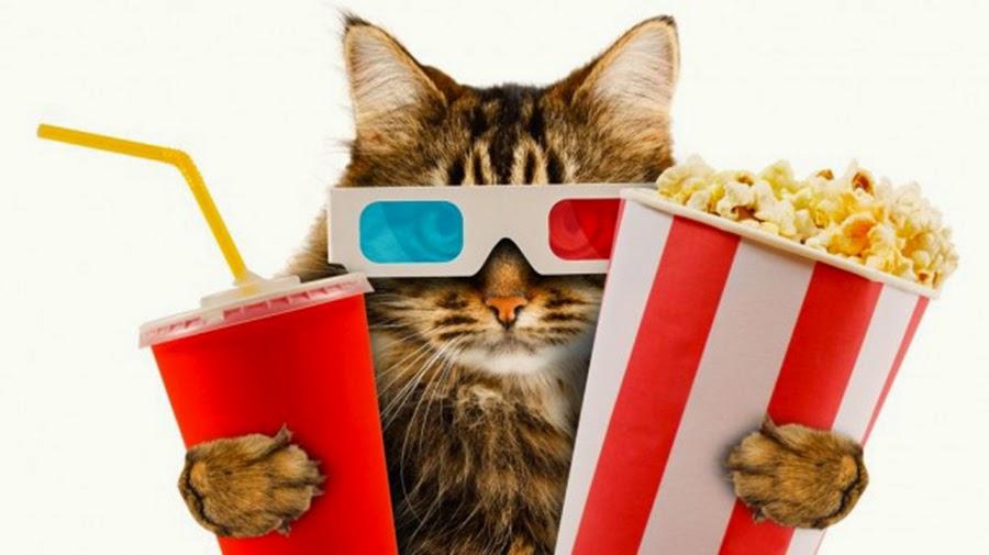 5 Best Festive Movies