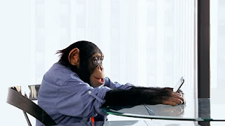 Chimpanzé mexendo no celular