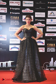 South Indian Celebrities Pictures at SIIMA 2016 DAY 1  0004