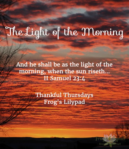 The Light of the Morning comes just before sunrise. With it, comes hope for a fresh new day. How we live today is up to us, choose wisely how you will live it. Thankful Thursdays Linkup l frogslilypad.net