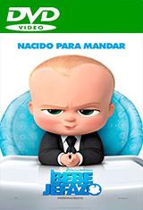 Un jefe en pañales (2017) DVDRip Latino AC3 5.1 / Español Castellano AC3 5.1