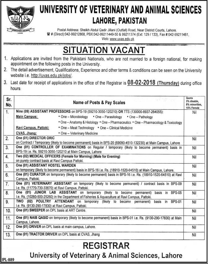 New jobs announced in University of Veterinary and Animal Sciences UVAS