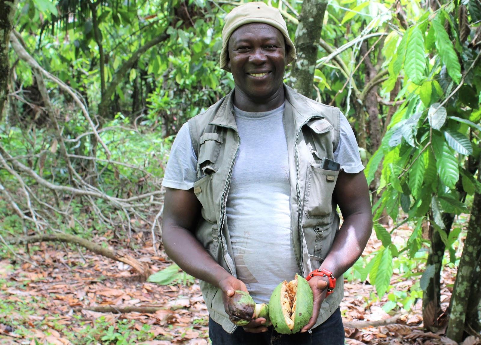 Cultural Significance of Kolanut…A Symbolic African fruit