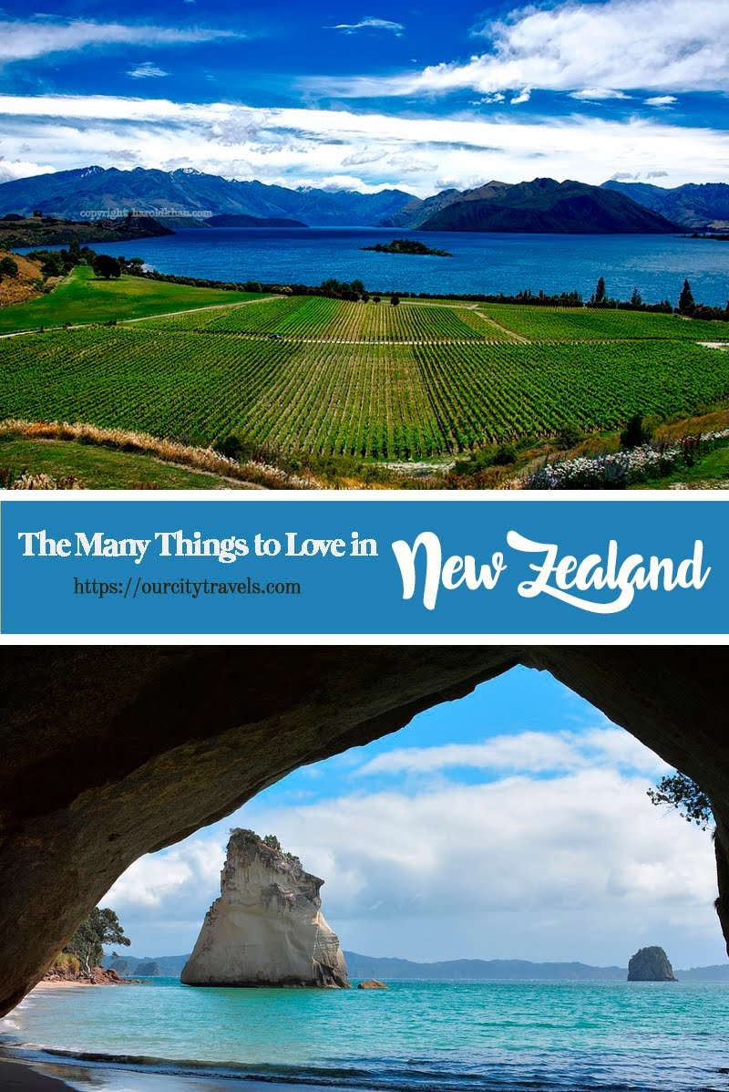 New Zealand has one of the most biodiverse range of flora and fauna in the world, largely because it was isolated (in a good way) for much of its existence, even from nearby Australia.