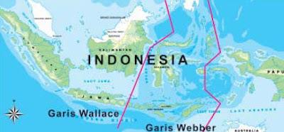 Peta Garis Weber dan Garis Wallace