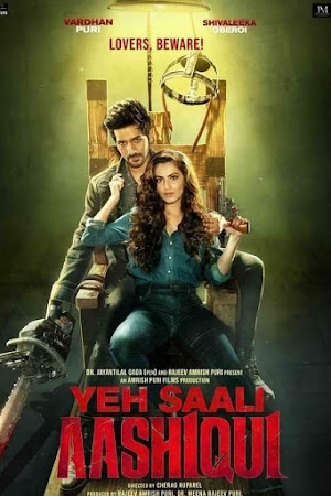 Watch Online Yeh Saali Aashiqui 2019 Full Movie Download HD Small Size 720P 700MB HEVC HDRip Via Resumable One Click Single Direct Links High Speed At WorldFree4u.Com