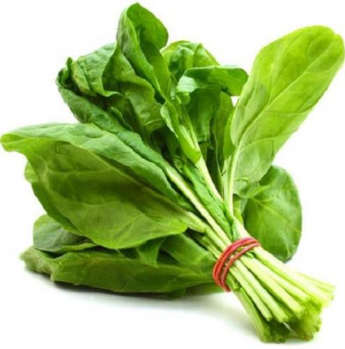 fresh-spinach-28palak-29-281kg-29-500x500