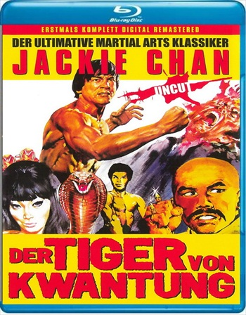 Master with Cracked Fingers 1971 Dual Audio Bluray Movie Download