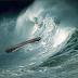 Στη κιβωτό του Νώε θα μπούν λίγοι. Βουλιάξτε τη για να σωθείτε