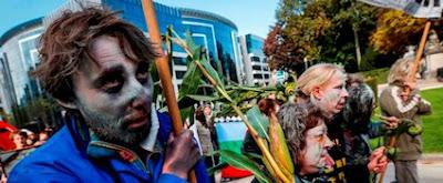 Γερμανία: Απαγορεύει την καλλιέργεια ΓΤΟ στην επικράτειά της