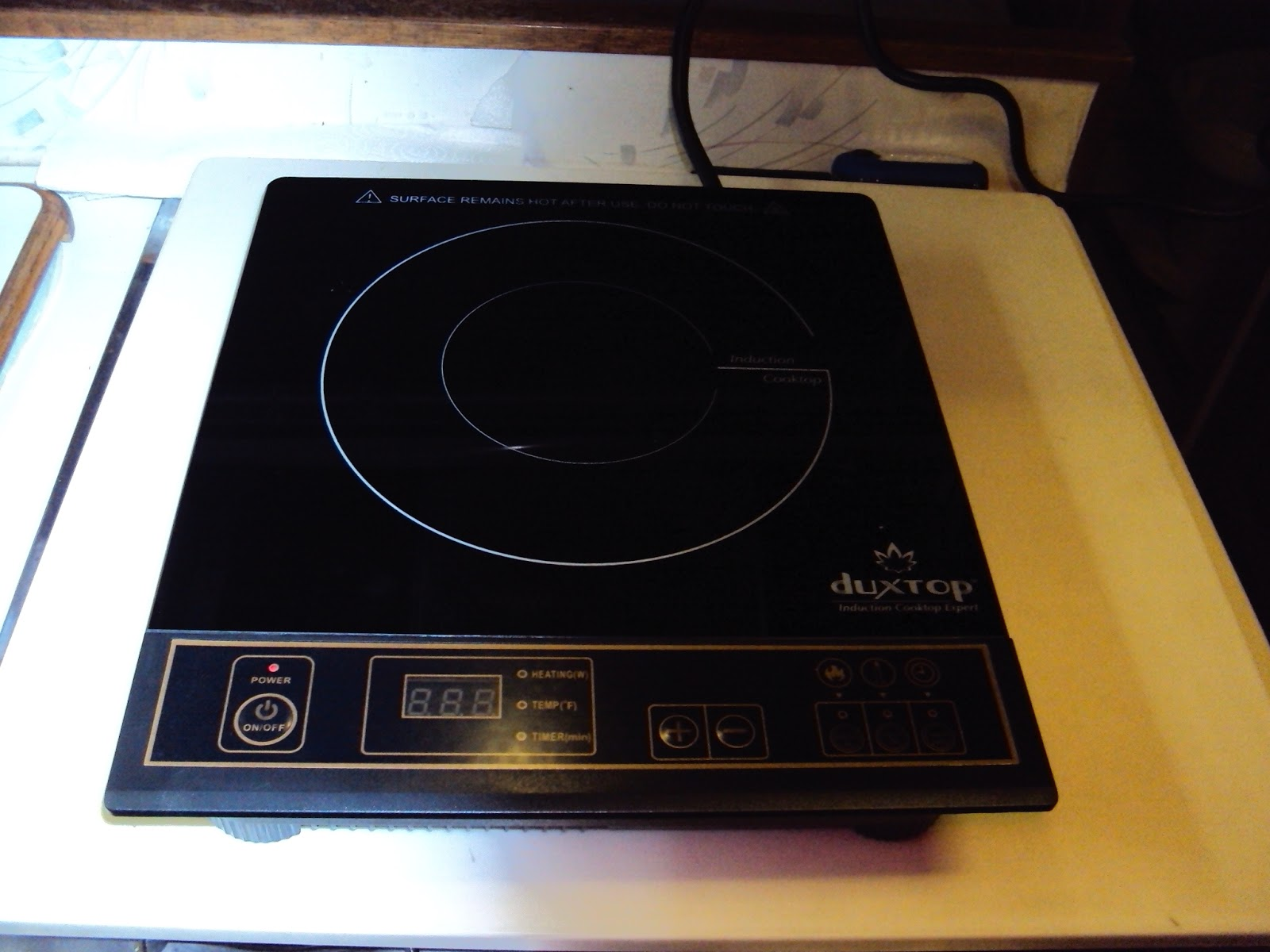 Wanderman Induction Cooking Does This Really Work