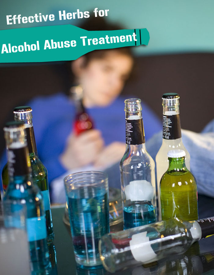 Effective Herbs for Alcohol Abuse Treatment