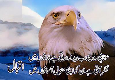 Iqbal Poetry, Allama Iqbal Urdu Poetry