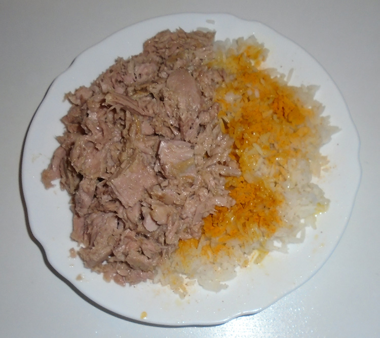 riz et thon