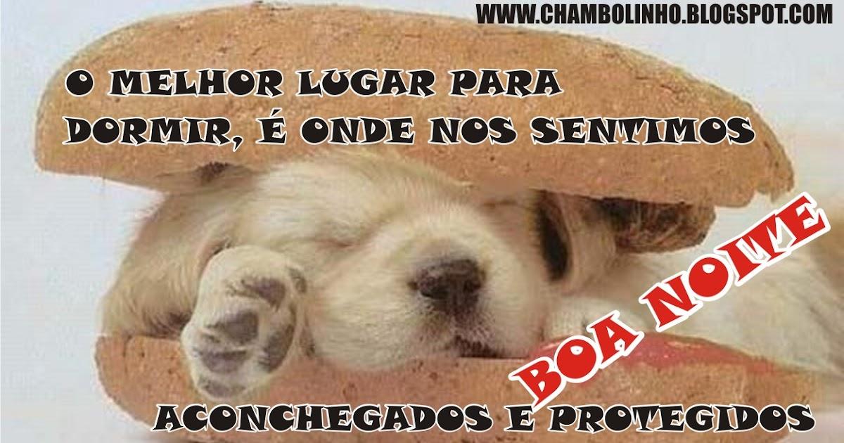 Chambolinho Recadinho De Boa Noite Pra Facebook: Boa Noite Pra Facebook Cãozinho Fofinho