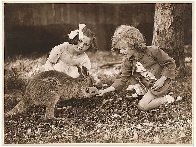 Kangaroo & girls, ca. 1925 - ca. 1945, by Sam Hood.