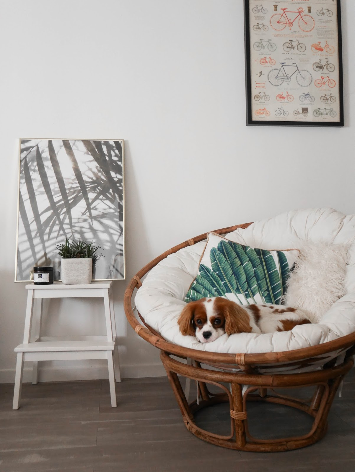 fauteuil papasan casa parisgrenoble