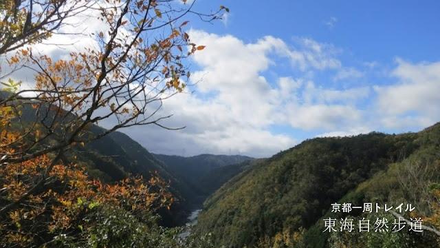 【京都景點】另類嵐山行,東海自然步道爬山去