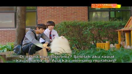 Frekuensi siaran K-Drama di satelit ChinaSat 11 Terbaru
