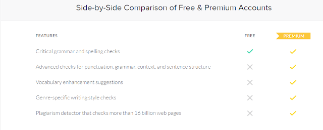 Grammarly Premium Feature