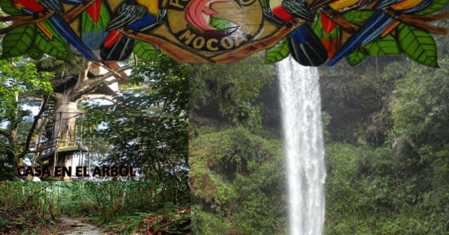 Paquete tur sticos reserva natural fin del mundo putumayo - Agencia de viajes diana garzon ...