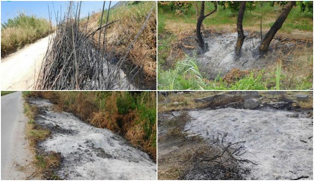 Φωτιές στην αυτοφυή βλάστηση και στους φυτοφράκτες αγροτεμαχίων στο Δέλτα Καλαμά (+ΦΩΤΟ)