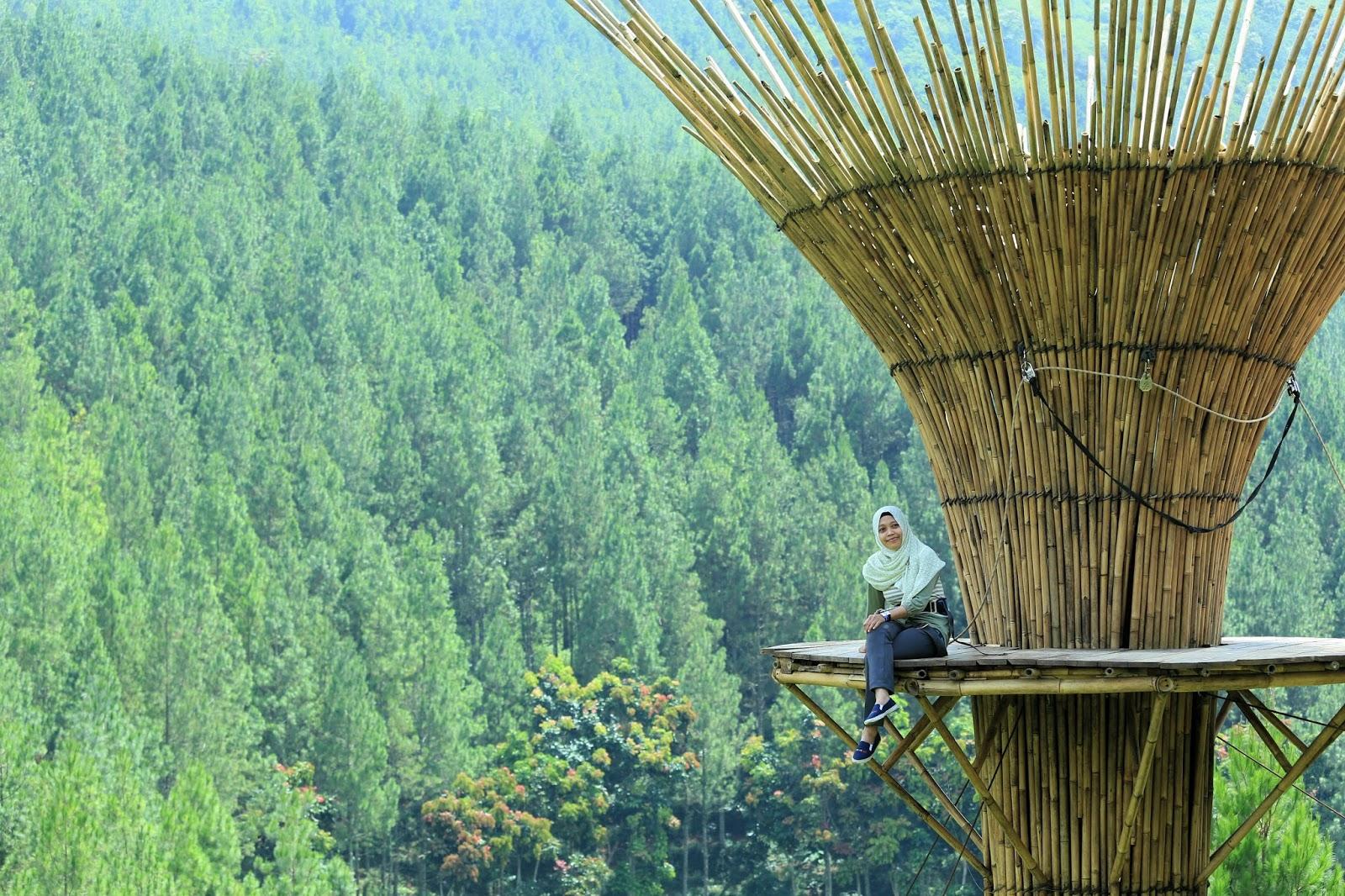 bamboo sky the lodge maribaya