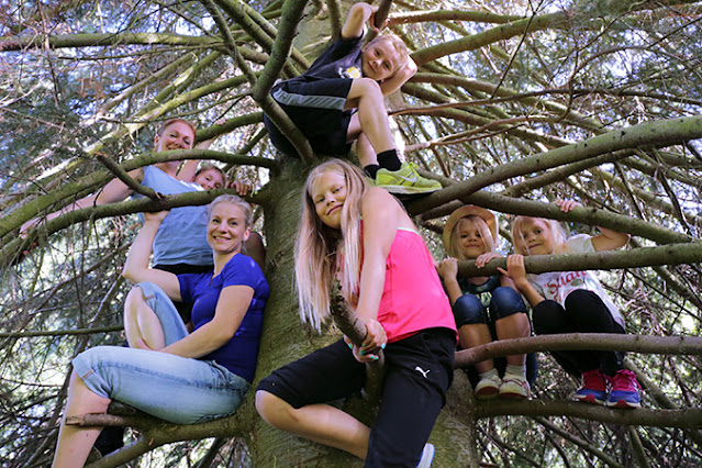 Kirsi Käyhty lasten kanssa puussa.