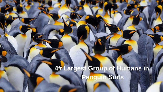Largest Group of Humans in Penguin Suits