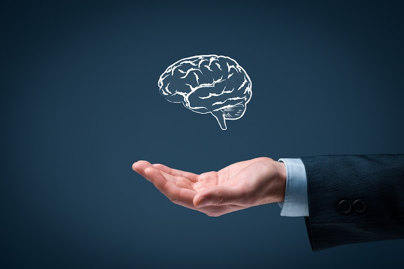Блиц-опрос. Считаешь ли ты себя интеллектуалом?