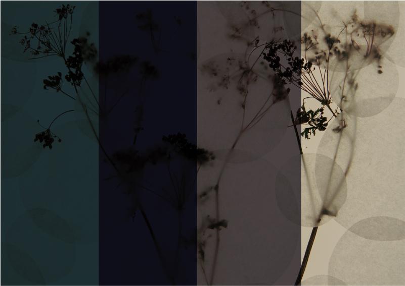 Affascinanti finiture in un palette di colori ispirata alla bellezza della natura