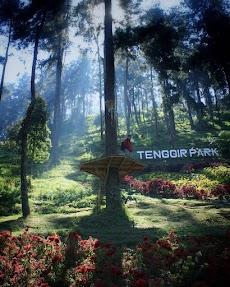 Harga Tiket Masuk Tenggir Park Ngargoyoso, Rute, Lokasi